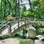 Śliczny ,a także uporządkowany ogród to zasługa wielu godzin spędzonych  w jego zaciszu w trakcie pielegnacji.